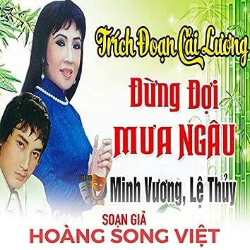 Đừng Đợi Mưa Ngâu - Hoàng Song Việt