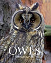 Best owls marianne taylor Reviews
