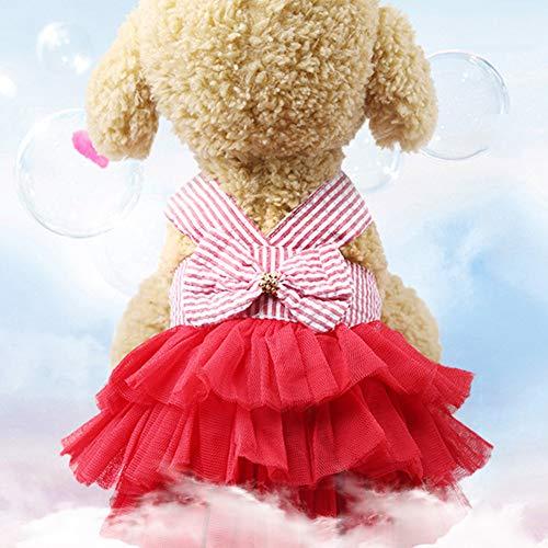 FOReverweihuajz Hond Kat Prinses Band Rok Puppy Bruiloft Verjaardag Party Decoratie Kleding Jurk Kostuums T Shirt Jas Zacht voor Huisdieren Outfits, M, Blauw