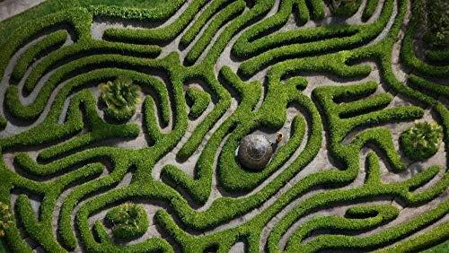3D Klassisches Puzzle 1000 Teile für Erwachsene Puzzle - Verdrehtes Labyrinth (75X50CM) - DIY Lernspiel Stressabbau Puzzle für Kinder Geschenk Wohnkultur Wandkunst