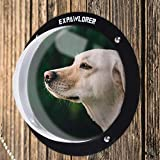EXPAWLORER 2 Pack Dog Fence Window for Pet - Durable Acrylic Dog Dome for Backyard Fence, Dog House, Reduced Barking, Necessary Hardware and Instructions Included