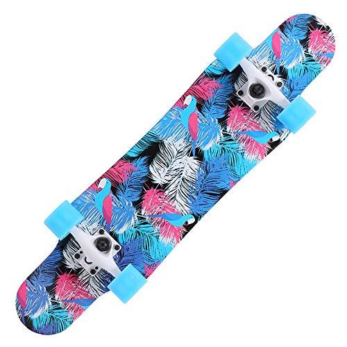 JJXD Longboard Sport Skateboard Mit Bunten Blinkenden Rädern, Geeignet Für Erwachsene Und Kinder, Professionelles Sportbrett Für Anfänger, 31 Zoll