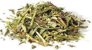Bulk Herbs: Hyssop 1 oz (Organic)