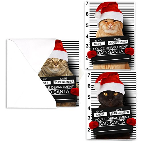 Purrpetrator Santa Cats Holiday Card Assortment Pack / 24 Christmas Cats Greeting Cards and Envelopes / 3 Bad Santa Kitten Designs With Message Inside