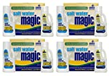 4) Natural Chemistry 07404 Spa Swimming Pool Water Magic Monthly Chemical Kits