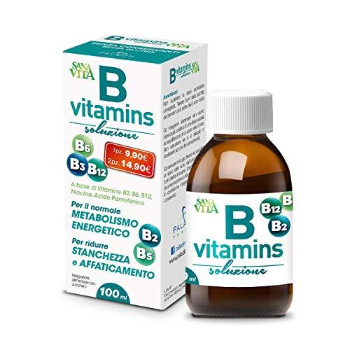 Paladin Pharma Sanavita B Vitamins Soluzione 100 Ml