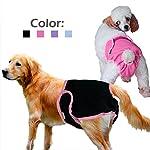dealglad® Cosy Pet chiot pour chien en coton Culotte physiologique menstruel sanitaire couches Sous-vêtements pour femme lavable en machine #3