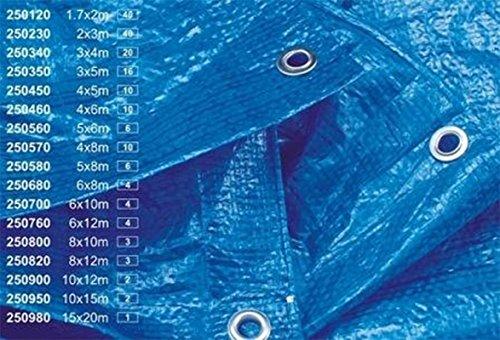 5 M x 6 m/m² 30 polyTarp bAUPLANE bâche + oEillets bâche de protection bleu