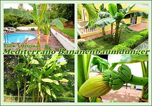 Bananenbaumdünger, Bananendünger,bananendünger,musa basjoo, 1,5 Kg Original Mediterrano derUmwelt zur Liebe