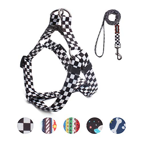 QQPETS Dog Harness Leash Set, Adjustable Heavy Duty Pulling Halter Harnesses for Small Breed Dogs, Back Clip, Anti-Twist, Perfect for Walking (S(14