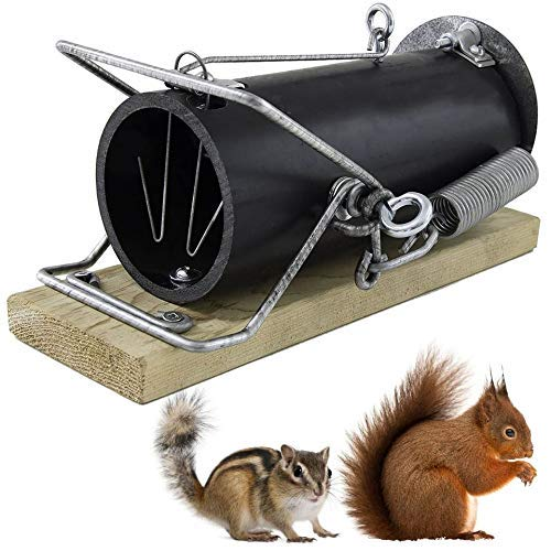 Red Squirrel Traps - Ouell Traps - Ground Squirrel Traps - Chipmunk Trap - Chipmunk Traps Outdoor - Human Trap