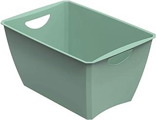 Rotho Lounge Boîte de Rangement 23L, Plastique (PP) sans BPA, Vert, 23L (46,0 x 32,0 x 25,0 cm)