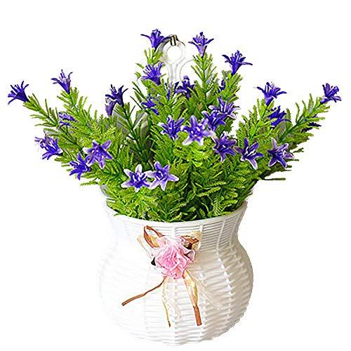 id/éal pour les plantes succulentes plante /à air fleurs artificielles contenant de d/écoration murale g/éom/étrique Waroomss Vase de jardini/ère suspendue vase mural suspendu jardini/ère suspendue