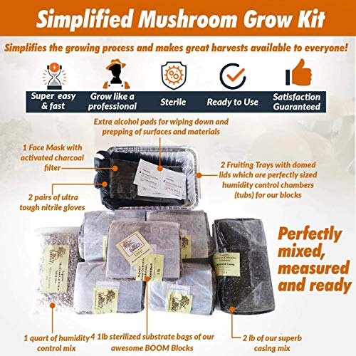 Mushroom Growing Kit from Ancient Path