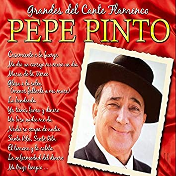 Grandes del Cante Flamenco: Pepe Pinto