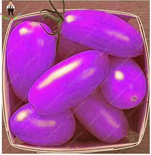 100pcs Graines de tomate Fruits pourpre cerise bio de tomate Graines Bonsai légumes semences saines jardin de plantes en pot noir
