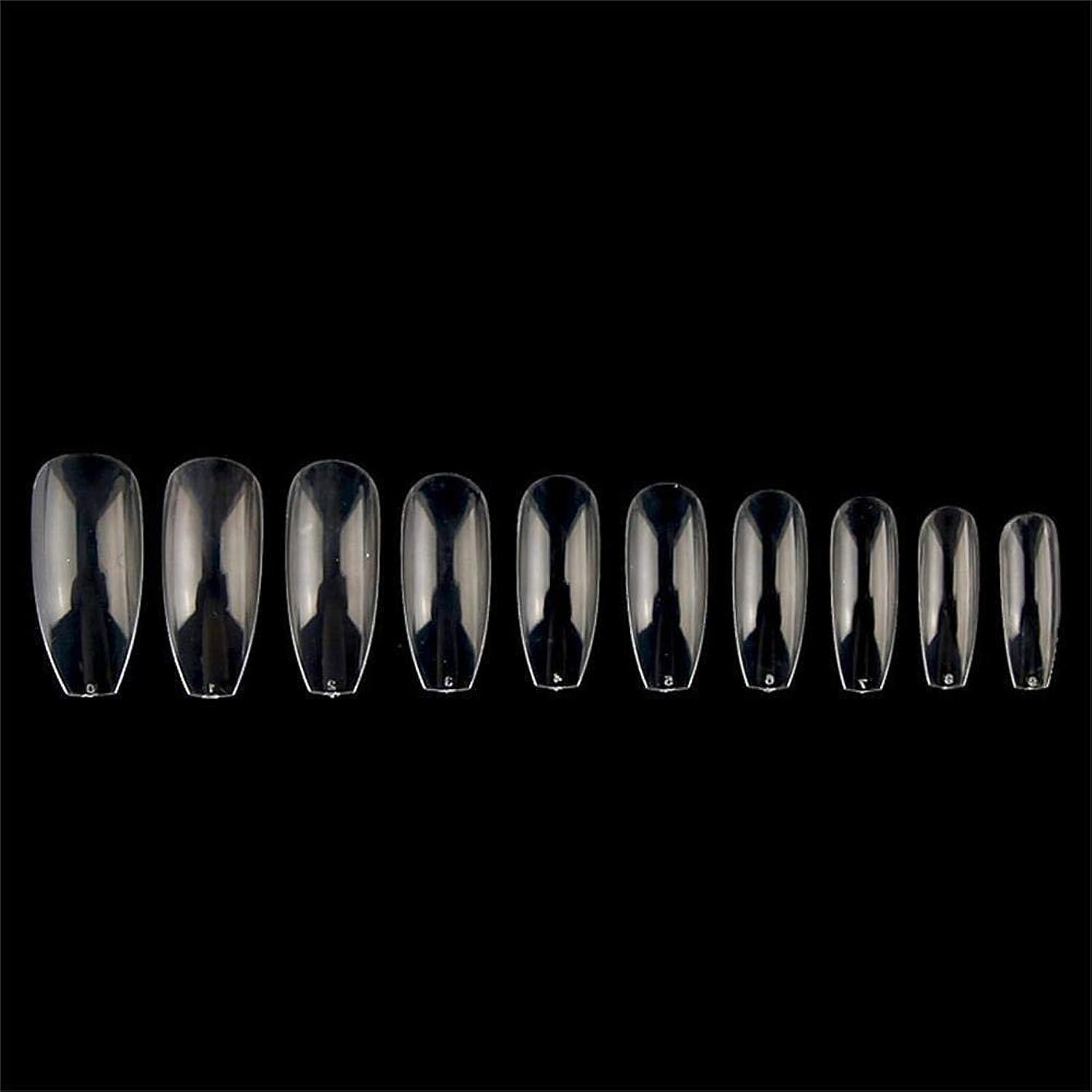 腰石慣習つけ爪 10サイズ ネイルチップ ロング オーバル ロング 付け爪 爪にピッタリ 卵形 練習用 透明