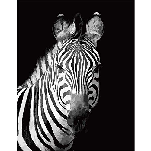 nobrand Schwarzweiss-Zebra-Tier-DIY-Malerei Durch Zahlen-Wandkunst-Bild-Acryl-Malerei Für Hauptdekoration