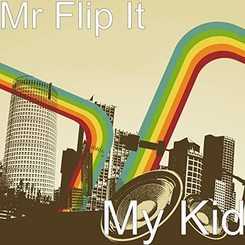 Mr Flip It