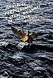 Premio Nacional de Literatura Gilberto Owen 2018 de cuento