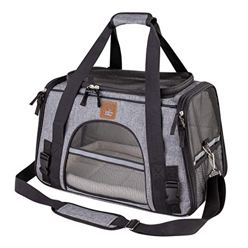 DLAGER Pet Carrier Soft-Sided Cat Carrier for Small Cats, Fits Underneath Airplane Seat. Comes with Fleece Pet Mats