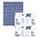 Hudson Baby Unisex Baby Coral Fleece Plush Blankets, Bears and Arrows, One Size