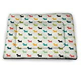 Yucou Dog Lover Patterned Pet Pad Colorful Scottish Terrier Silhouettes Polka Dot Backdrop Purebred Animal Pattern Waterproof and Machine Washable Multicolor 18'x12'