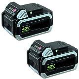 IKRA 17180929-AZ1 Doppelpack 2 Batterien 40 V...
