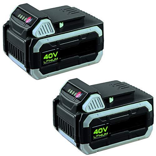 IKRA 17180929-AZ1 Doppelpack 2 Batterien 40 V 2,5Ah Li-Ion Akkus Ersatzakkus ONE FOR ALL, schwarz