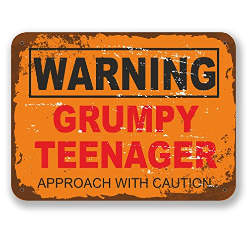 2 x 10cm Grumpy Teenager Warning Sign Vinyl Sticker Laptop Boys Joke Gift #6561 (10cm Wide x 7.5cm Tall)