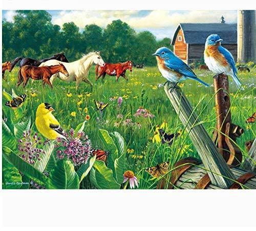 Rompecabezas de 1000 Piezas Pájaro Caballo de Hierba Un Divertido Juego de Inteligencia cooperativo Familiar Lleno de desafíos y logros(75x50cm)