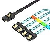 Mini SAS HD to SATA Cable, Wordima 1.6FT Internal Mini SAS 36Pin Male SFF8087 to 4X SATA 7Pin Female Cable, Mini SAS Host/Controller to 4 SATA Target Splitter Breakout Cable