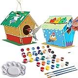 DIY Bird House Kit,Paint Crafts Birdhouse for Girls Boys Wild DIY Wooden Bird