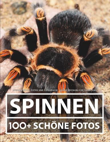 Spinnen Buch - Fotos und Fotografie - Große Erstaunliche Sammlung: 100 Wunderschöne Bildern - Für Kinder und Erwachsene