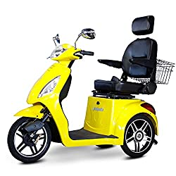 q? encoding=UTF8&MarketPlace=US&ASIN=B01AME2B8M&ServiceVersion=20070822&ID=AsinImage&WS=1&Format= SL250 &tag=performancecyclerycom 20 - Electric Tricycle Buyers' Guide