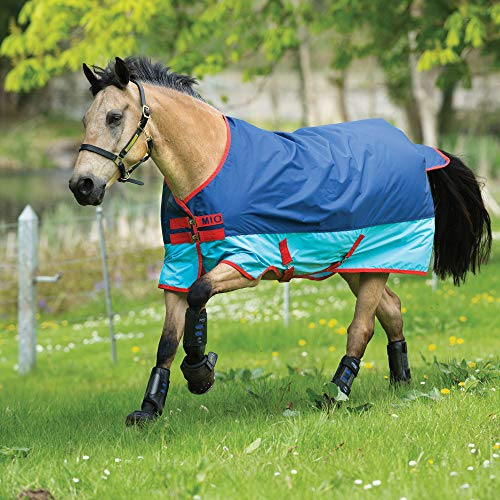 Horseware Mio Turnout Medium 200g - Dark&Aqua Blue/Red