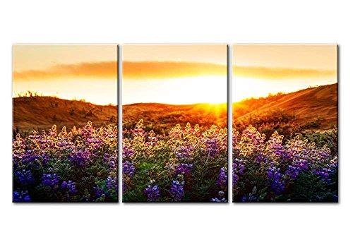 Impresión sobre lienzo arte de la pared paisaje para de flores de color morado Campo de lavanda panel de Sunrise Sunshine 3 piezas giclée cuadros arte enmarcado y estirado fotos imágenes
