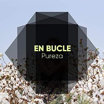 En Bucle Pureza, Vol. 1