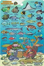Caribbean Sea Reef Creatures Guide Franko Maps Laminated Fish Card 4