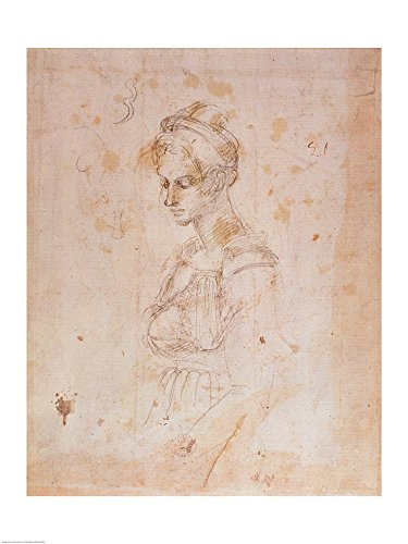 W.41 Sketch of a Woman by Michelangelo Buonarroti Art Print, 21 x 28 inches