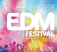 EDM FESTIVAL-ELECTRONI