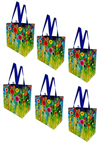 Earthwise Reusable Grocery Bags Shopping Totes Stylish Gift Bag Heavy Duty Laminated Material (Pack of 6) (Abstract Flowers)