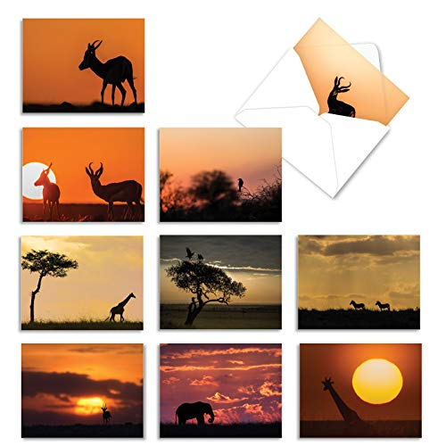 10 All-Occasion Note Cards with Envelopes 4 x 5.12 inch, Assorted 'Safari Sunsets' Stationery Featuring Stunning African Sunsets, Blank Greeting Cards for Weddings, Birthdays, Thank You M6551OCB