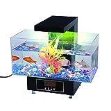 Premier acuario de escritorio (Completo del regalo para Oficina y Hogar)...