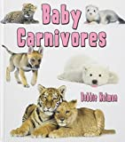 Baby Carnivores (It's Fun to Learn About Baby Animals)
