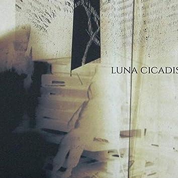 Luna Cicadis