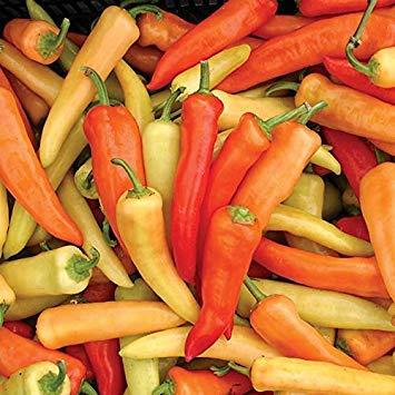 SANHOC Semi della confezione: semi di peperoncino dolce ungherese