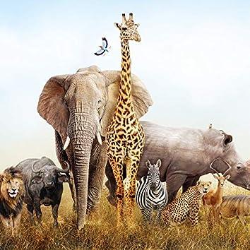 African World Adventure
