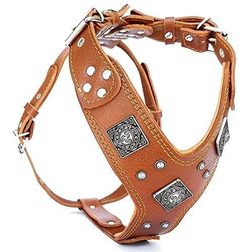 "Bestia ""EROS Genuine Leather Dog Harness, Large Breeds, Cane Corso, Rottweiler, Boxer, Presa, Bullmastiff, Dogo, 100% Leather, Studded, L- XXL Size, Soft Padded. Made in Europe!"