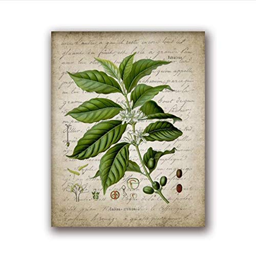daerduotutu Coffee Making Vintage Poster Print Coffee Percolator and Coffee Bean Canvas Painting Home Decor A73 50×70CM Without Frame